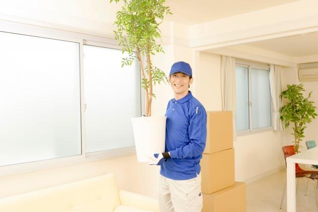 植物の安い発送方法なら、第四種郵便物!