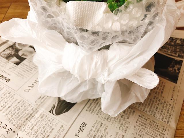 鉢植え梱包3−2
