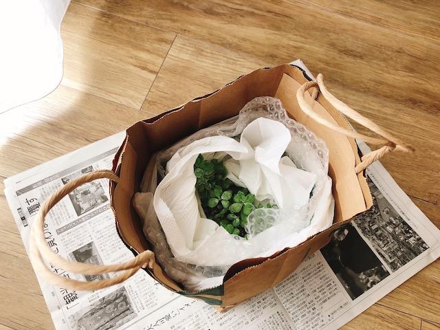 鉢植え梱包4