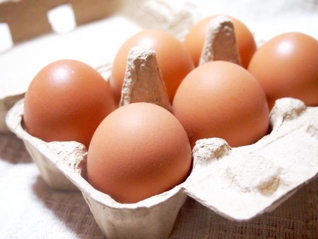 卵パック パルプモウルド